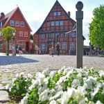 Färberhaus-Markt
