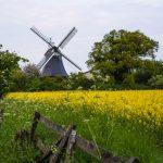 Krokauer Mühle