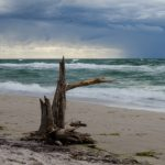 Darß Westküste