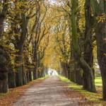 Ehlerstorf im Herbst
