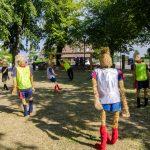 """Stein - """"Fußball-WM 2014"""""""